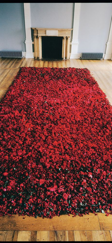 Anya Gallaccio, <i>Red on Green</i>, 1992<br>The Hyman Collection, London